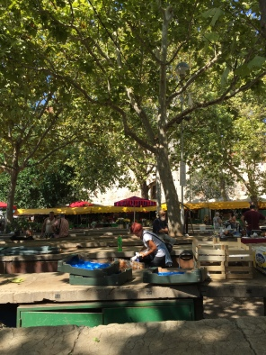 I love the trees that cast cool shadows in the market